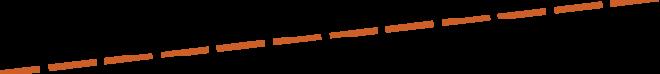 Dev Inc Homepage-line-2